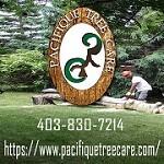 Pacifique Tree Care Icon