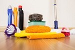 Vicky's House Cleaning Services Icon