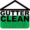 Gutter Clean King Icon