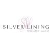 Silver Lining pmu Icon