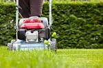 JB Lawn Care and Maintenance Icon