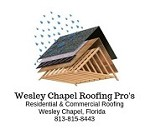 Wesley Chapel Roofing Pro's Icon