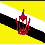 Brunei  News and Information Icon