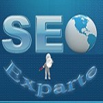 Seo exparte Icon