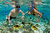 Snorkeling Tours Grand Cayman Icon