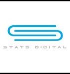 Stats Digital Icon