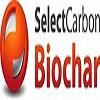 Selectcarbonchar Icon