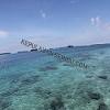 travel pulau seribu Icon