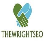 The Wright SEO Icon