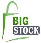 BIGSTOCK Icon