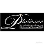 Platinum maxicab Icon