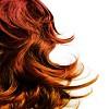 Hair Suite Llc Icon