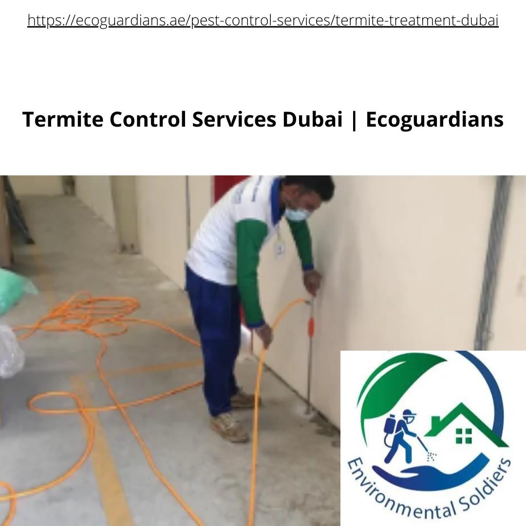Termite Control Services in Dubai | Ecoguardians