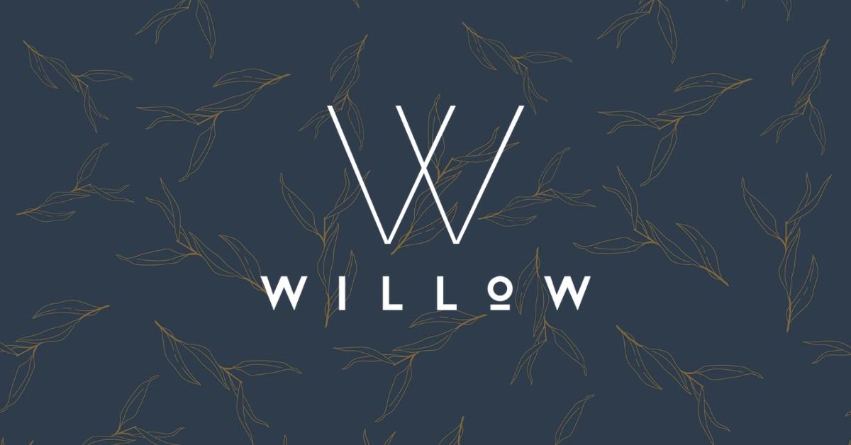 Willow Vegan Bistro