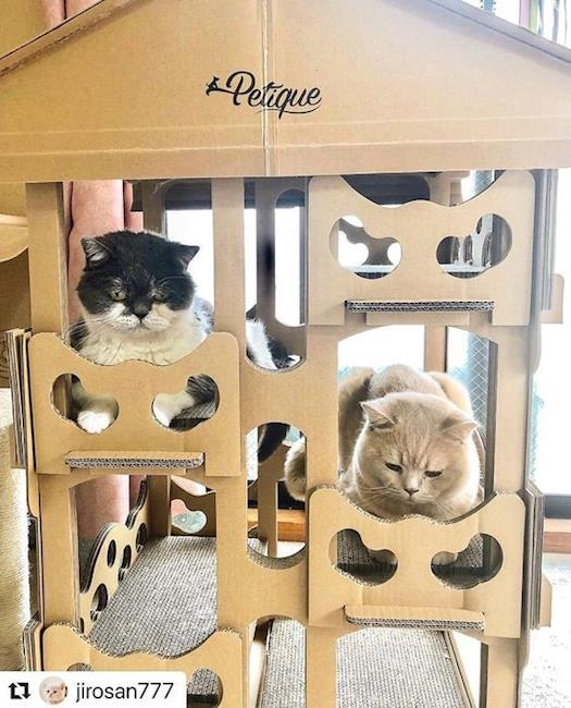 Eco-Friendly Cat house