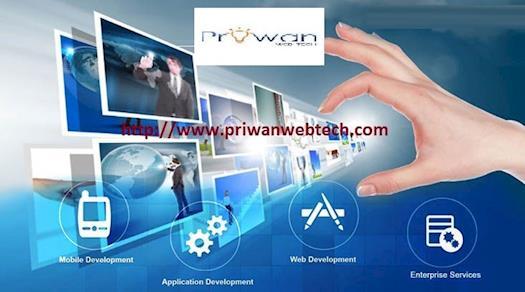 custom web application development company noida