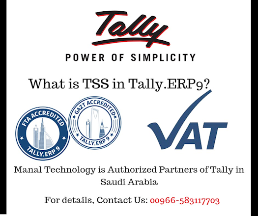 What is Tally TSS?