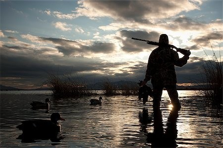 Duck Hunting Season: Everything You Need to Know