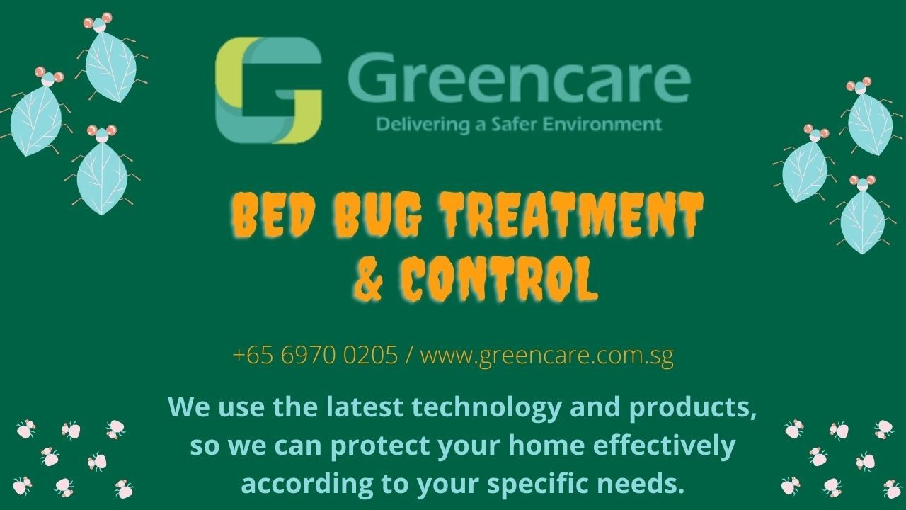 Bed Bug Control Services in Singapore | Greencare