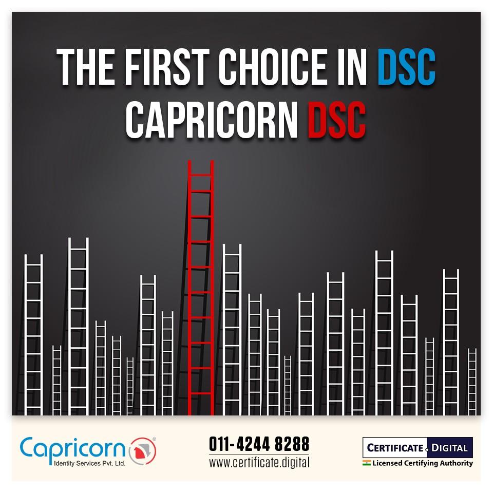 Capricorn DSC