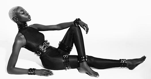 Anoeses restraint set ''Cobra''
