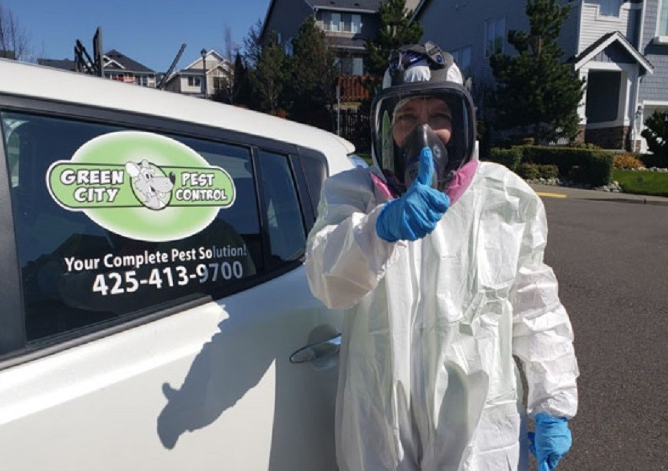 Rodent Control Maple Valley
