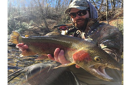 Advantages of canada fly in fishing cabins