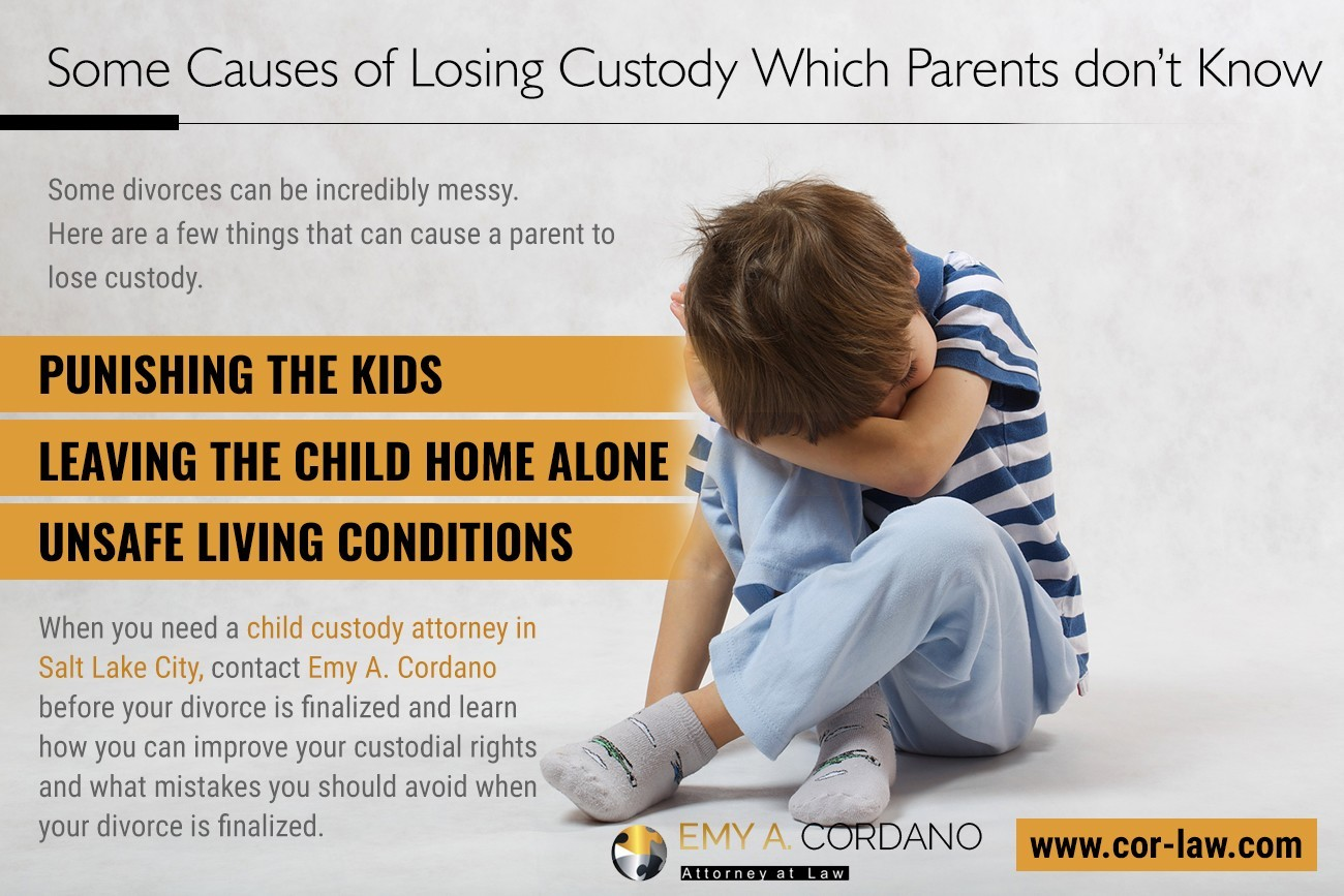 Some Causes Of Losing Custody Which Parents Don't Know