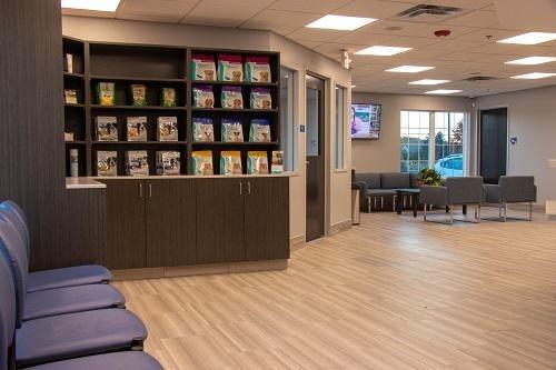 Cornerstone Veterinary Hospital of Clifton Park