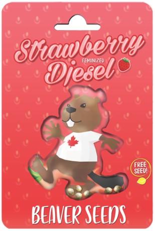 Strawberry Diesel Feminized Marijuana Seeds