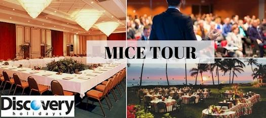 Plan Your MICE Tour - Discovery Holidays