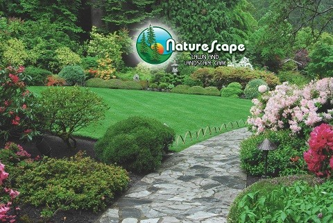 Naturescene