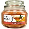Melon Margarita 16 oz. Jar Candle