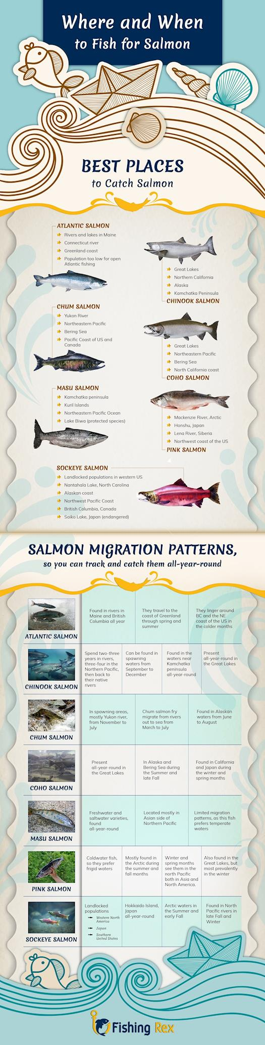 Where and When to Fish for Salmon