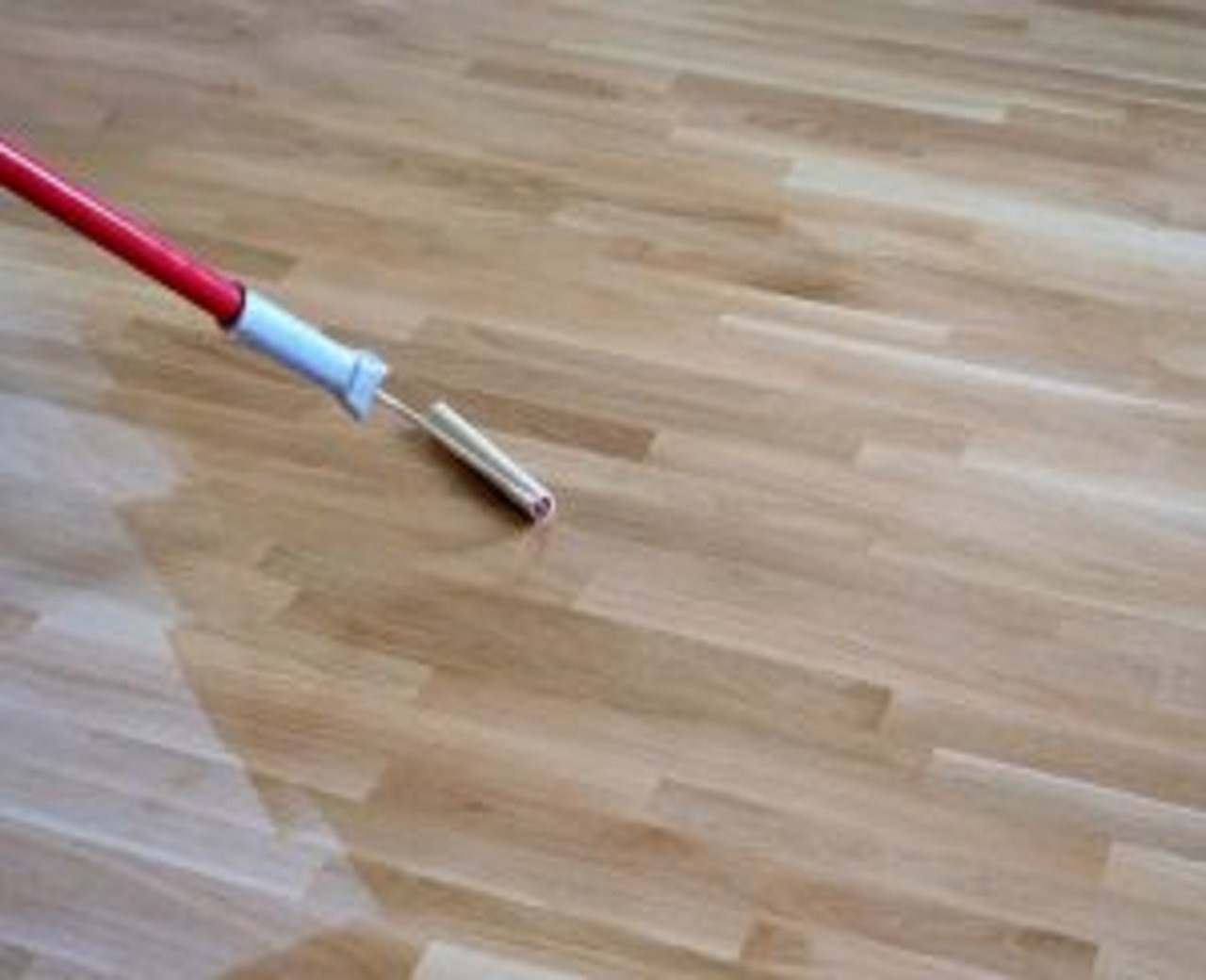 Floor refinishing service
