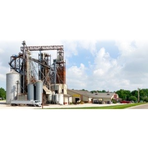 Walnut Hill Grain