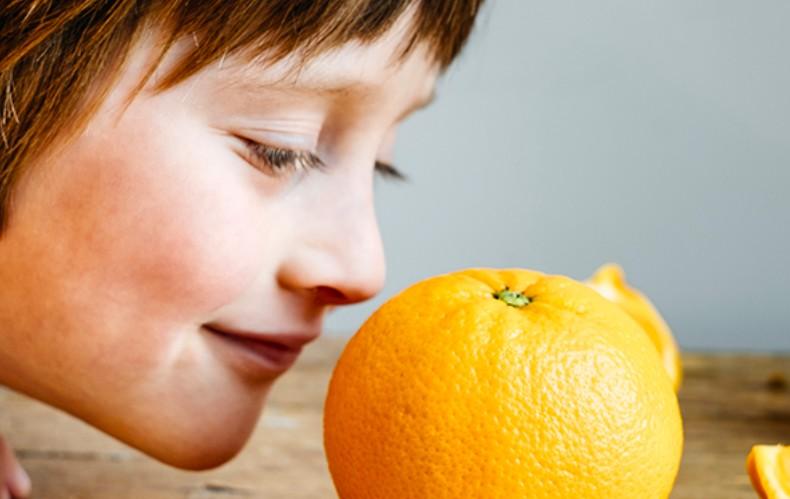 How to regain sense of smell