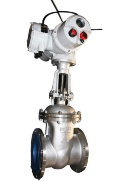Electric Actuated Gate valve manufacturer in Germany