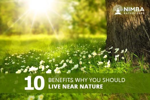 Top 10 Benefits you should live near Nature.