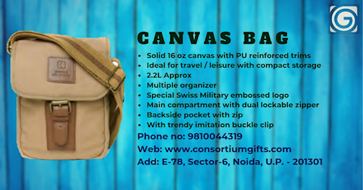 Buy Swiss Military Canvas Beige Sling Bag (CAN-3) Online