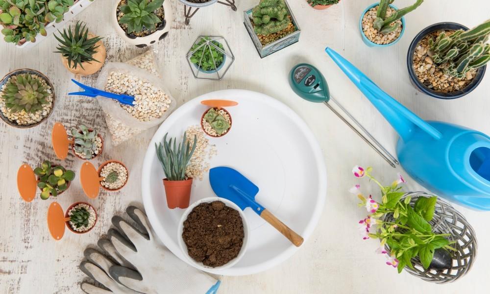 Gardening Accessories Online | Buy Garden Tools & Equipment