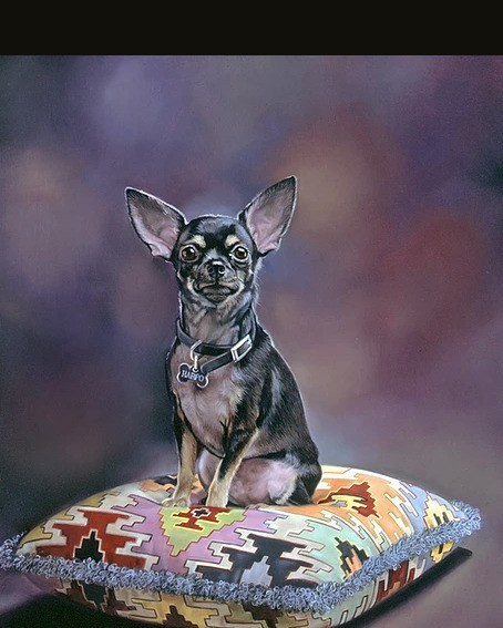 Pet Portraits from Photo