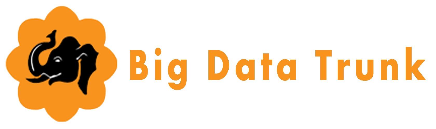 Big data Trunk Logo
