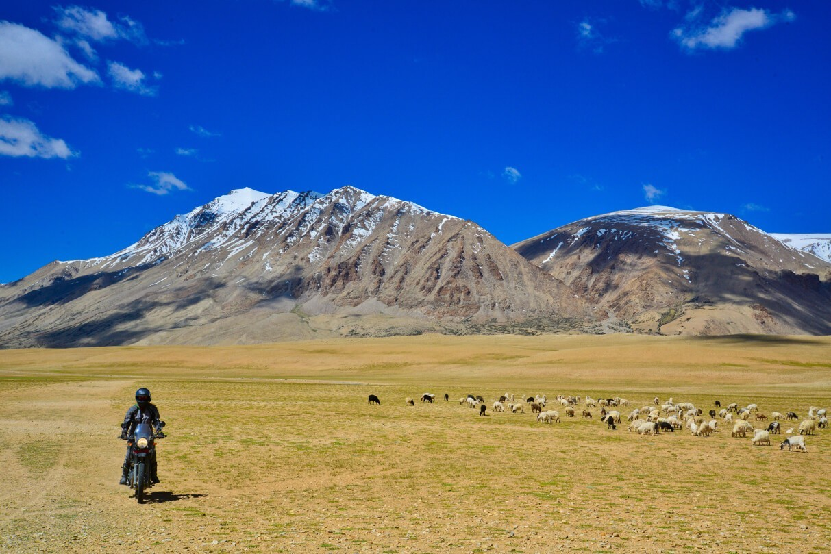 Ladakh Motorcycle Tours