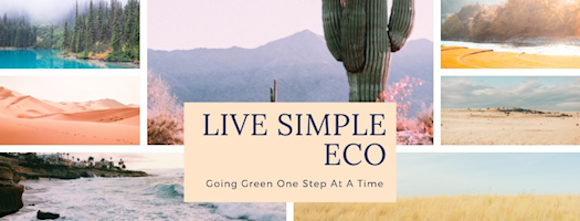 Joann Author of Live Simple Eco
