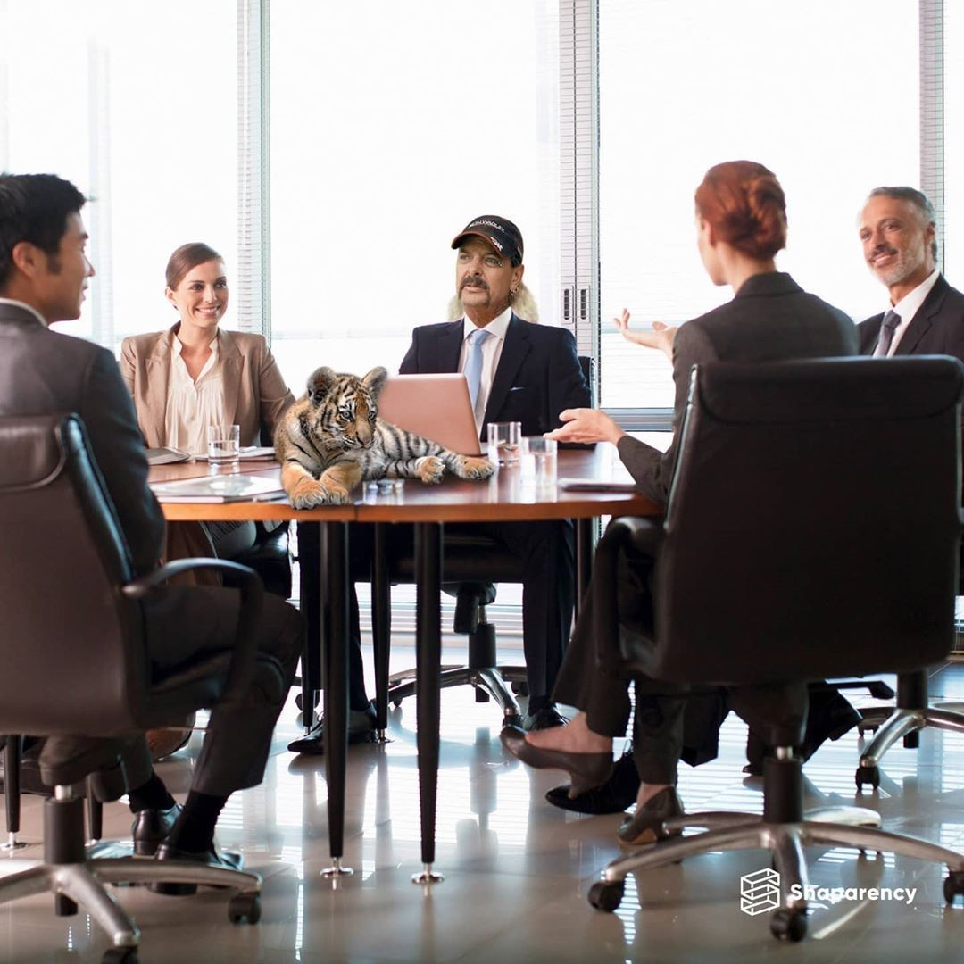 Digital Board Management Software - Shaparency