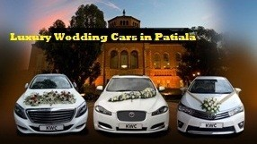 Luxury Wedding Cars In Patiala At Thedreamcars