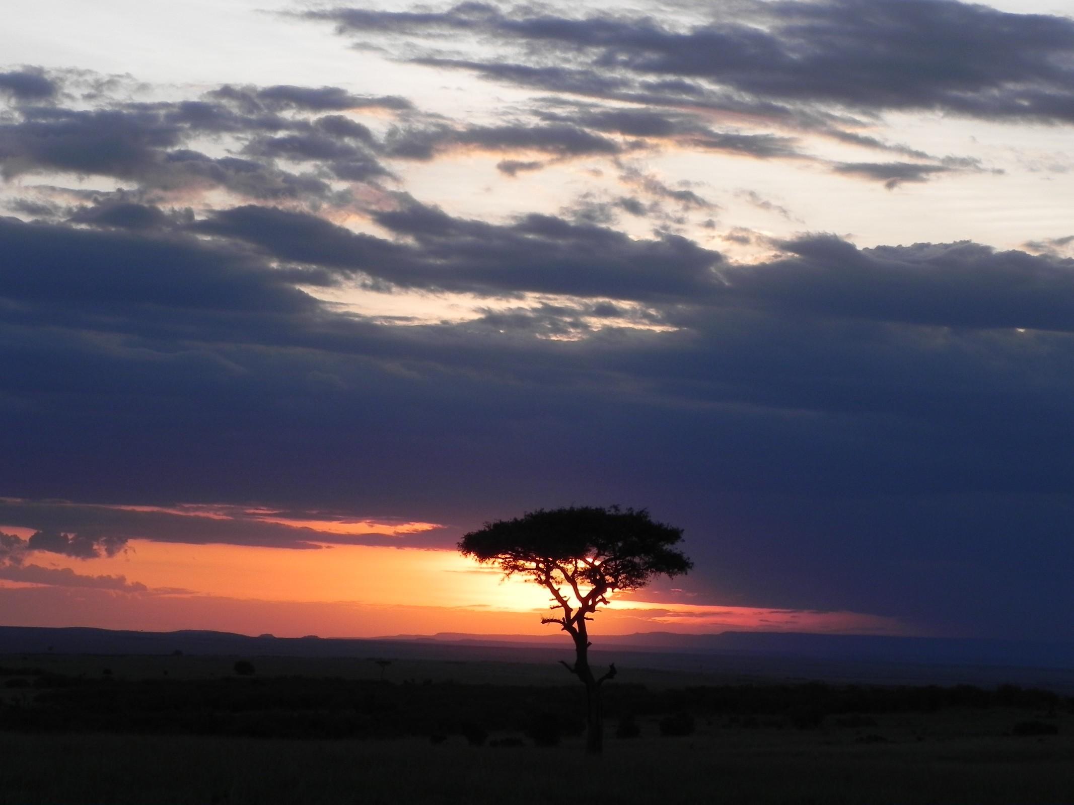 Best Kenya safari