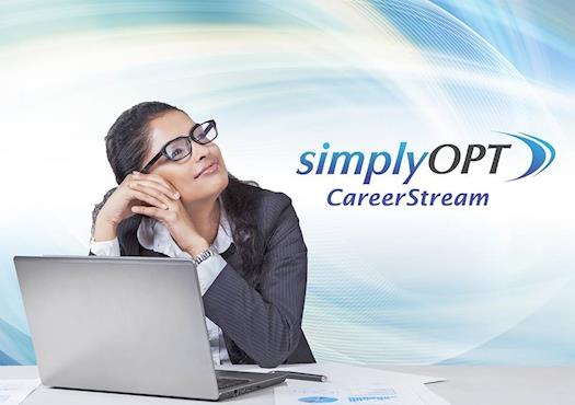 opt jobs in usa