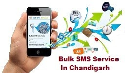 Bulk SMS Service In Chandigarh At Webczarsolutions
